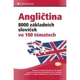 Angličtina 8000 základních slovíček ve 100 tématech