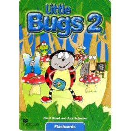 Little Bugs 2 Flashcards