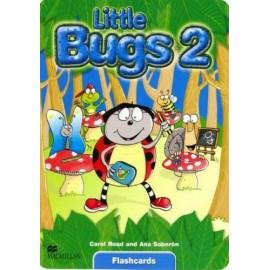 Little Bugs 2 Flashcards