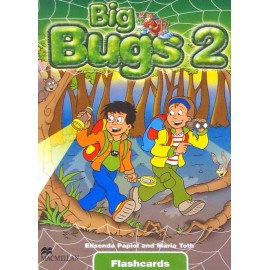 Big Bugs 2 Flashcards