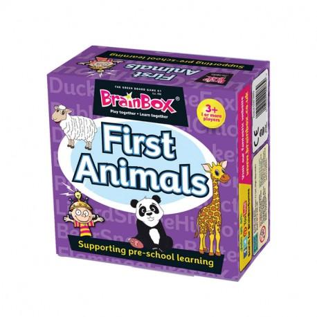 BrainBox First Animals