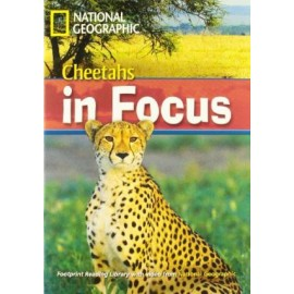 National Geographic Footprint Reading: Cheetahs in Focus+ DVD