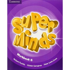Super Minds 6 Workbook