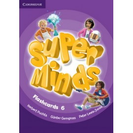 Super Minds 6 Flashcards