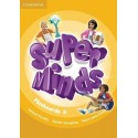 Super Minds 5 Flashcards