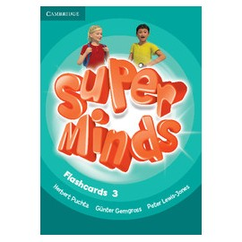 Super Minds 3 Flashcards
