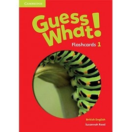Guess What! 1 Flashcards