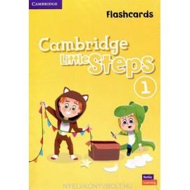 Cambridge Little Steps 1 Flashcards