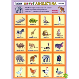 Hravá angličtina - zvířata