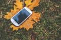 S jakými aplikacemi se na podzim pořádně opřít do angličtiny?